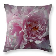 Soft Shades Throw Pillow