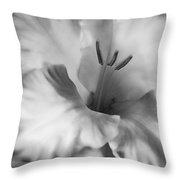 Soft Silver Gladiola Flower  Throw Pillow