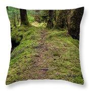 Soft Trail Throw Pillow