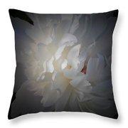 Soft White Peony Throw Pillow
