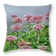 Softest Pink Throw Pillow