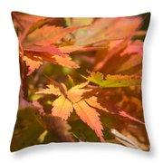 Softly Autumn Throw Pillow