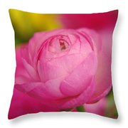Softly Opening Throw Pillow