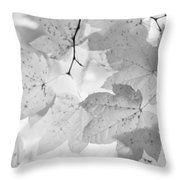 Softness Of Maple Leaves Monochrome Throw Pillow