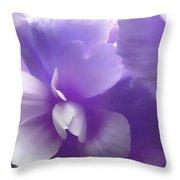 Softness Of Purple Begonias Throw Pillow