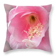Soft..pink..delicate 2 Throw Pillow