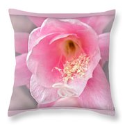 Soft..pink..delicate Throw Pillow