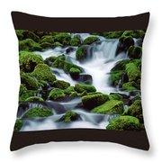 Sol Duc Throw Pillow