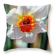 Solar Flare Group Throw Pillow