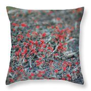 Soldiers At Attention Throw Pillow