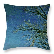 Solemn Sky Throw Pillow