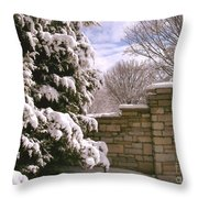 Solid Winter Throw Pillow