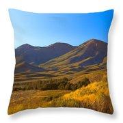 Solider Mountain Shadows Throw Pillow