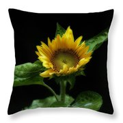Solitary Beauty Throw Pillow