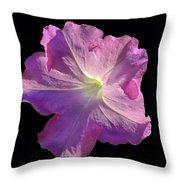 Solitary Pink Petunia Throw Pillow