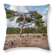 Solitary Tree Amidst Field Of Boulders Throw Pillow