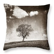 Solitary Tree In Limagne Landscape. Auvergne. France Throw Pillow by Bernard Jaubert