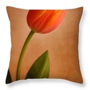 Solitary Tulip Throw Pillow