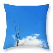 Solitude - Blue Sky Art By Sharon Cummings Throw Pillow