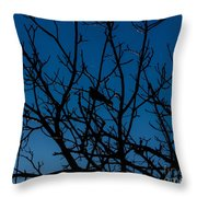 Solitude In The Midst Of Chaos Throw Pillow