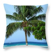 Solo Palm Throw Pillow