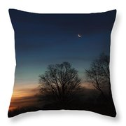 Solstice Moon Throw Pillow
