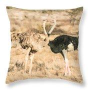 Somali Ostriches Kissing Throw Pillow