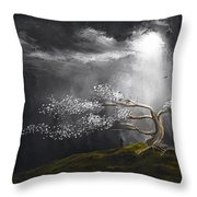 Somber Reflection Throw Pillow by Lourry Legarde