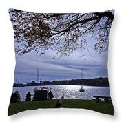 Somber View Throw Pillow