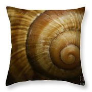Some Call It Home Throw Pillow