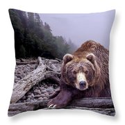 Some Days You Eat The Bear Some Days The Bear Eats You Throw Pillow