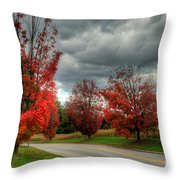 Some Fall Colors Throw Pillow