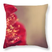 Some Light Into Your Darkness Throw Pillow by Laurie Search