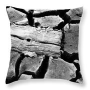Some More Wood Black And White Throw Pillow