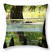 Some Turtles At Radium Springs Creek Throw Pillow