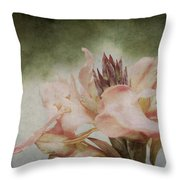 Somebody's Beauty Throw Pillow