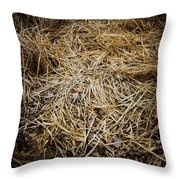 Somebody's Place Throw Pillow
