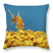 Something Fishy Throw Pillow by Donna Blackhall
