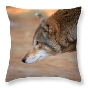 Something Got Her Attention Throw Pillow