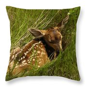 Something I Stumbled On Throw Pillow