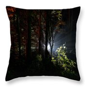 Something Out There Throw Pillow