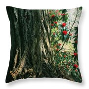 Sometimes Life Is Sweet Throw Pillow