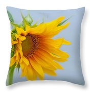 Sometimes We Feel Like This ... Throw Pillow
