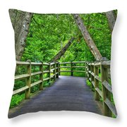 Somewhere In The Upper Peninsula Throw Pillow