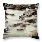 Somewhere Inside The Memory Throw Pillow by Taylan Apukovska