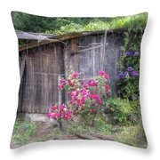 Somewhere Near Geyserville Ca Throw Pillow by Joan Carroll