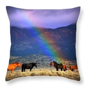 Somewhere Over The Rainbow Throw Pillow by Jeanne  Bencich-Nations