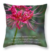 Song Of Solomon - The Flowers Appear Throw Pillow