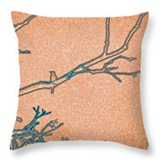 Songbird Peach Throw Pillow