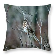 Songs Of Sparrows Throw Pillow